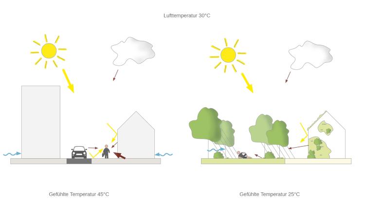 Grafik Thermisches Empfinden